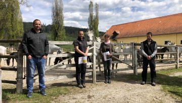 Betriebsratswahl im Lipizzanergestüt Piber